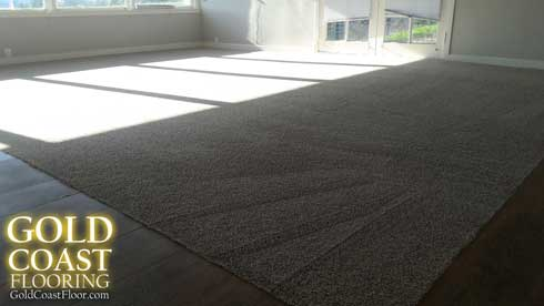 best lincoln Professional-carpet-cleaning-services-newcastl-lincolnca