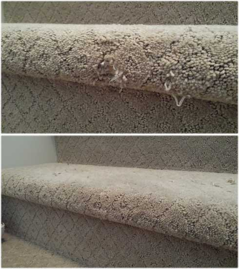 best-carpet-repair-roseville-stair-damage-pet-repair