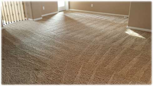 best-local-carpet-cleaning-prices-in-lincoln-ca