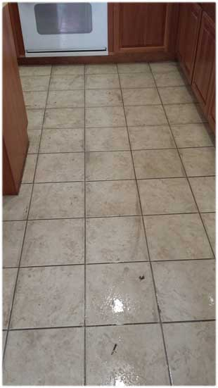 Tile Cleaning Elk Grove CA Best Affordable Tile Grout - What is the best solution to clean tile floors