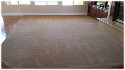 carpet-cleaning-deals-and-prices-in-lincoln-ca