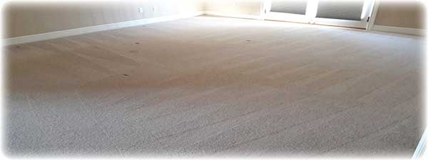 how long does carpet cleaning take to dry gold coast flooring. Black Bedroom Furniture Sets. Home Design Ideas