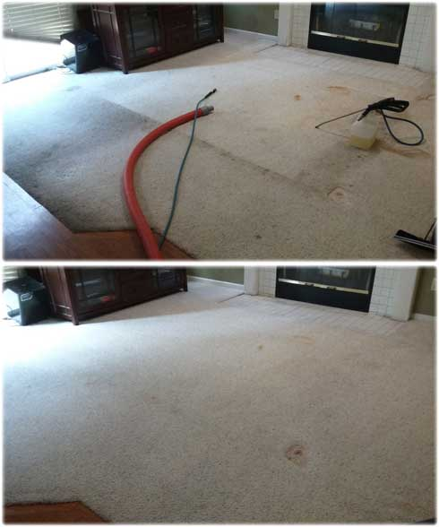 Carpet Cleaning Rocklin Ca 95765 Best Carpet Cleaning