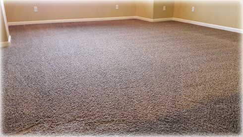 rocklin CARPET CLEANING SERVICES - carpet-cleaning-rocklin--roseville---lonetree-condos-web