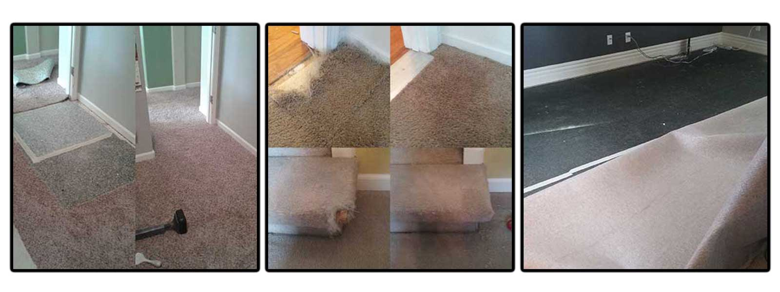How To Repair Carpet From Cat Scratches