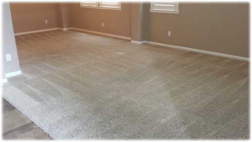 professional-carpet-cleaning-lincoln-ca