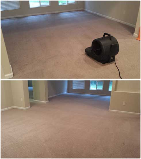 rocklin CARPET CLEANING SERVICES - top-rated-carpet-cleaning-rocklin-pheasant-lane