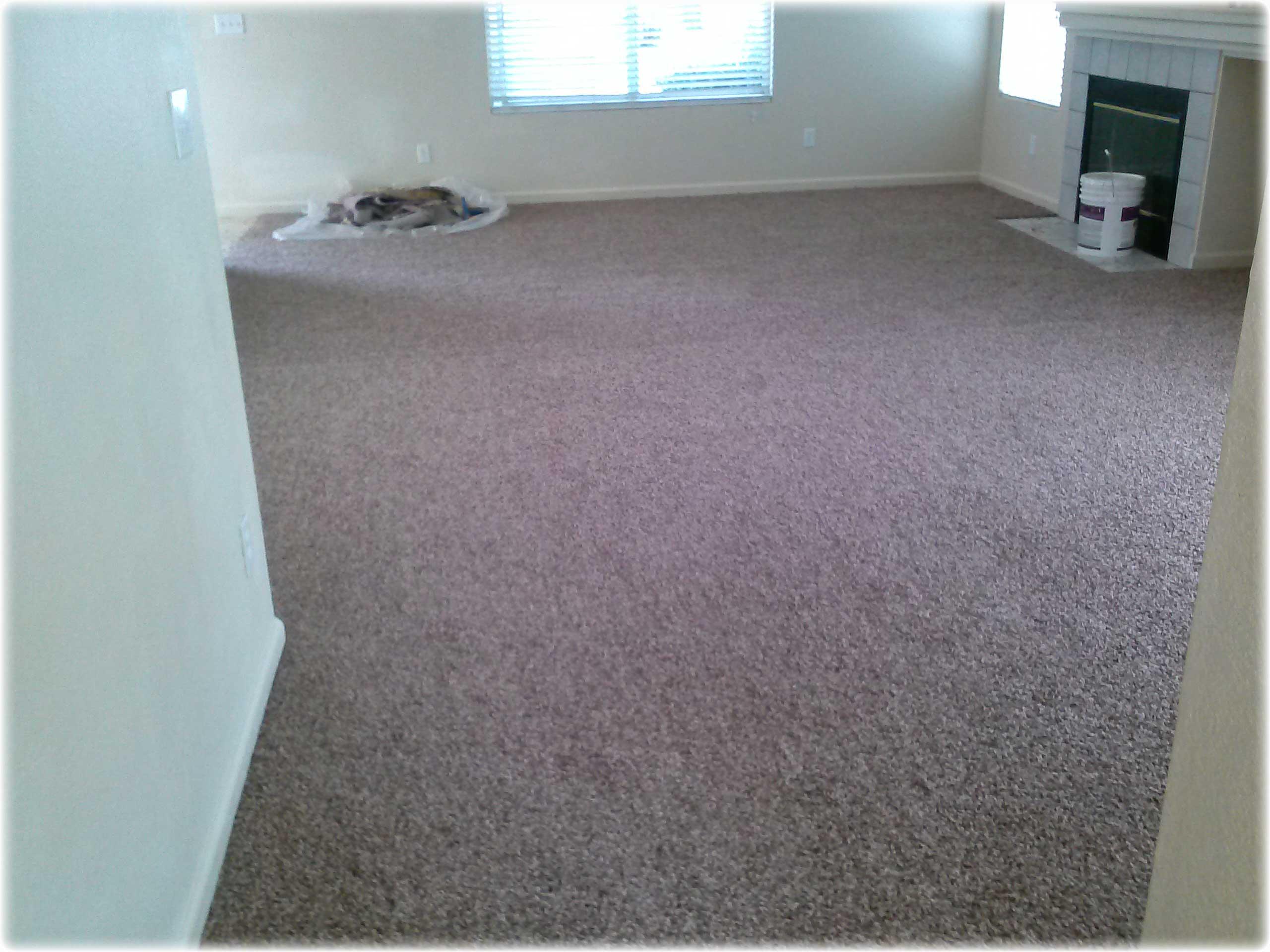 Carpet Restretching Seattle Carpet Vidalondon