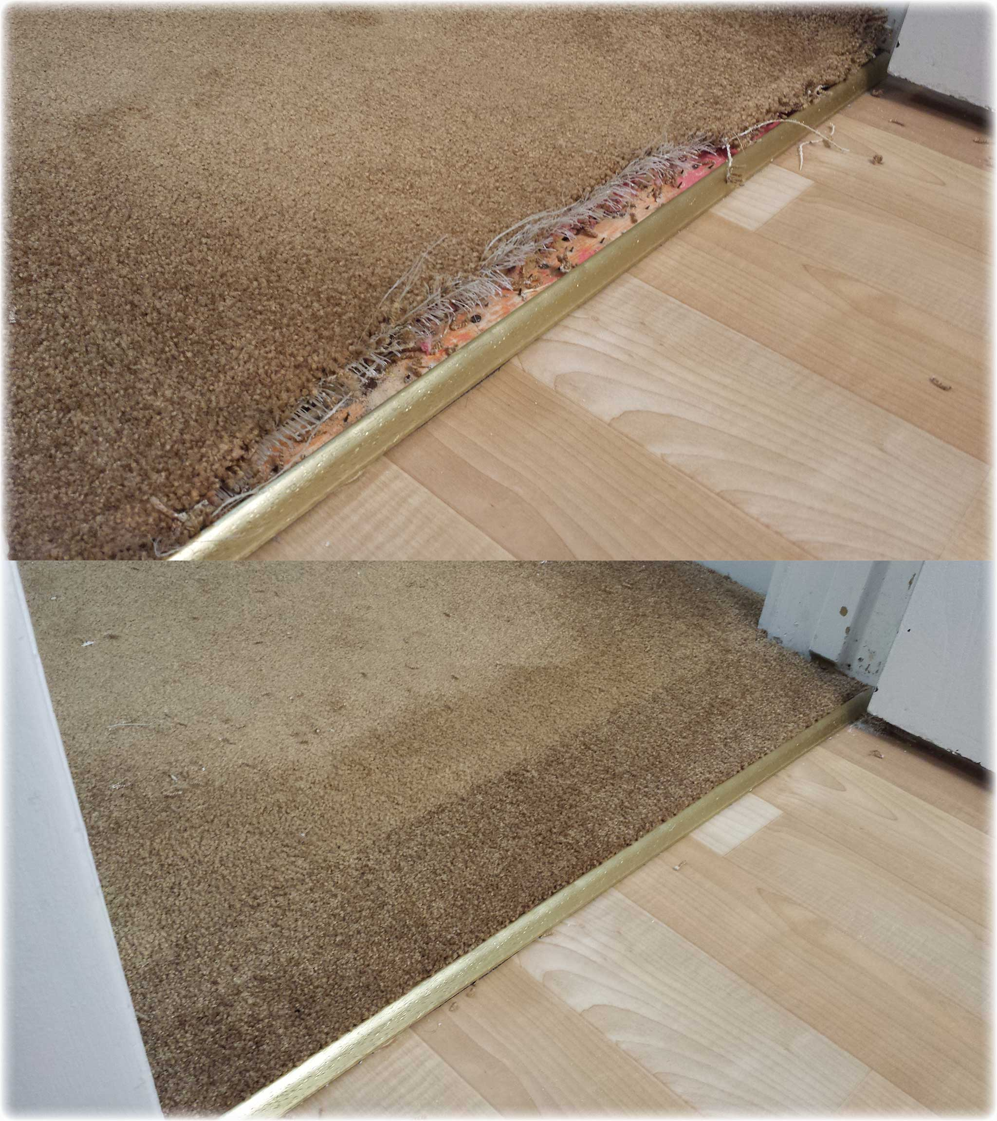 Gold Coast Flooring Gallery | carpet cleaning, repair ...